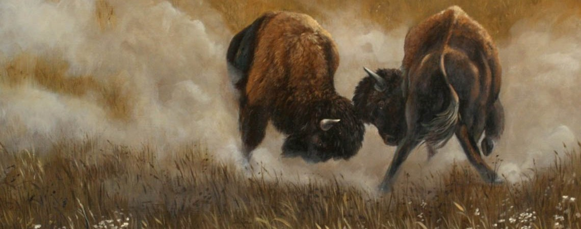 Clash Of The Bison by Carol Heiman-Greene